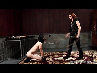 Training petplay 1