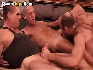 Three daddy bears deepthroating