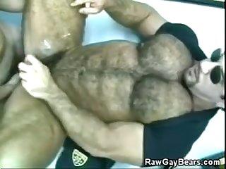 Musculoso pentelhudo enrabado