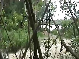 ویڈیو