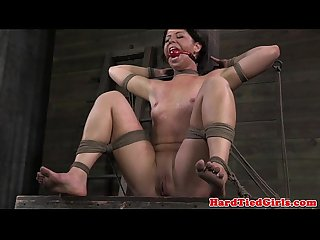 Ballgagged bdsm sub whipped harshly