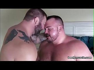 Beefymuscle com massive muscle bears fucking tags muscle Bear gay bodybuilder beefy massive thick bo