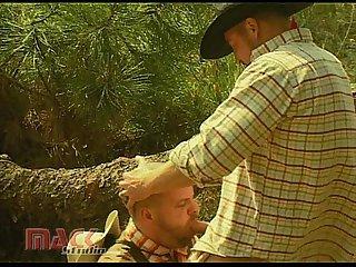 Cowboys x stories